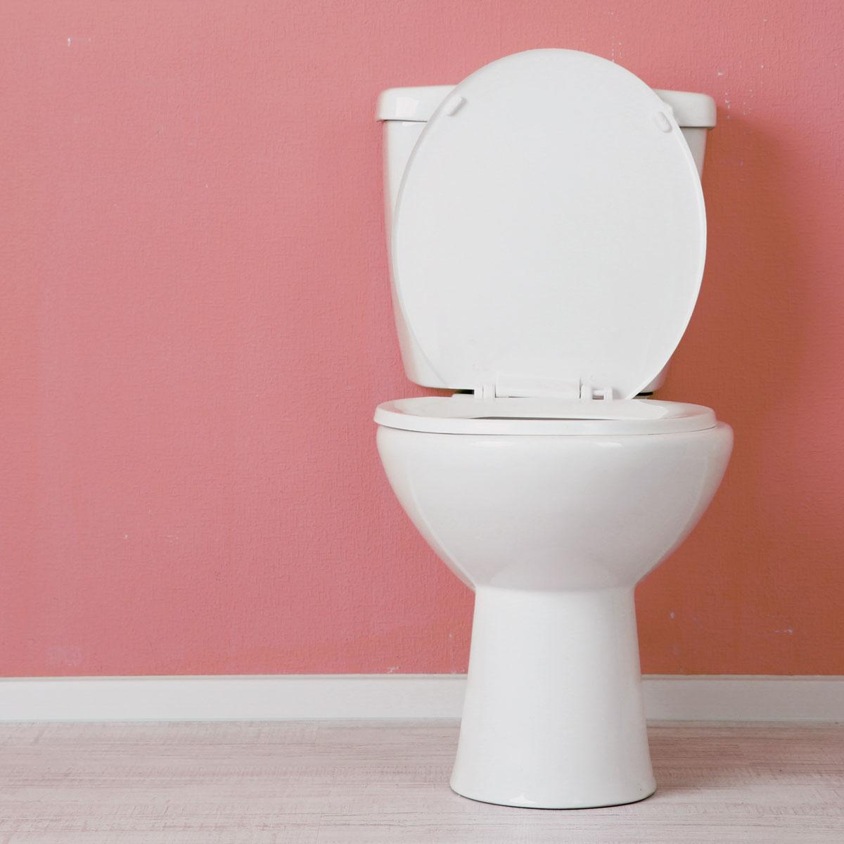toilet-leaks-singapore-plumber